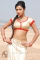 Amala Paul Spicy Hot Stills