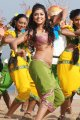 Amala Paul Hot in Bhale Thammudu