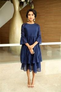 Actress Amala Paul Images @ Rakshasudu Success Meet