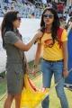 Amala Paul in CCl Match
