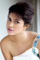 Actress Amala Paul Latest Hot Photoshoot Images