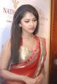 Tamil Actress Amala Paul in Saree Hot Pics