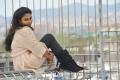 Actress Amala Paul Wallpapers in Iddarammayilatho Movie