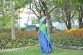 Actress Amala Paul Hot Saree Wallpapers in Iddarammayilatho