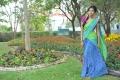Iddarammayilatho Movie Actress Amala Paul Wallpapers