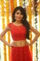 Actress Monica Sharma @ Aman Movie Launch Stills