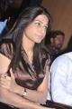 Actress at Amara Movie Audio Launch Stills