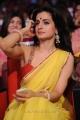Ameesha Patel in Saree Photos at TSR TV9 Awards