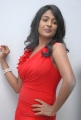 Actress Amitha Rao Hot Photos at Chemistry Audio Launch
