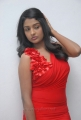 Chemistry Actress Amitha Rao Hot Photos in Red Dress