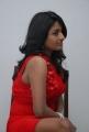 Actress Amitha Rao Hot Photos in Red Dress