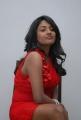 Telugu Actress Amitha Rao Hot Photos in Red Dress