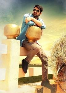 Actor Naga Shaurya in Ammammagarillu Movie Stills HD