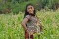 Actress Iniya in Ammavin Kaippesi Movie Stills