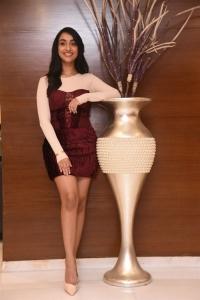 Actress Amrin Qureshi Press Meet Stills at Daspalla Hotel