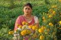 Amrutha Valli Latest Stills