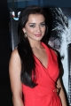 Actress Amy Jackson Hot Pics at Thandavam Trailer Release