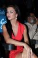 Actress Amy Jackson New Hot Pics