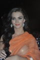 Amy Jackson in Transparent Saree Hot Stills