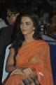 Actress Amy Jackson in Transparent Saree Hot Photos