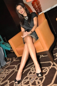 Actress Amy Jackson Hot Images @ I Movie Press Meet