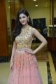 Actress Amyra Dastur Latest Stills @ RajuGadu Pre-Release Function