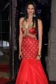 Shubra Aiyappa @ An Ode To Weaves & Weavers Fashion Show by Shravan Kumar Photos