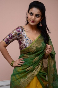 Vakeel Saab Actress Ananya Nagalla Saree Photos