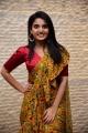 Vakeel Saab Heroine Ananya Nagalla Saree Pics