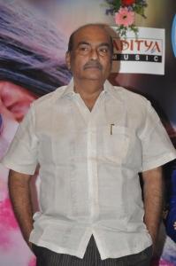 Anarkali Telugu Movie Audio Release Photos
