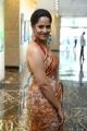 Actress Anasuya Saree Pics @ Rangasthalam Thank You Meet