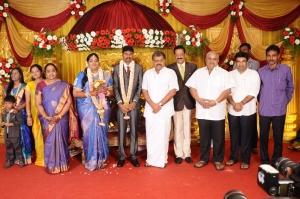 GK Vasan, BS Gnanadesikan @ Anbalaya Prabhakaran's Daughter Wedding Pictures