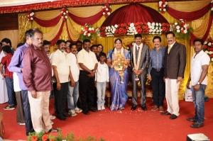 Thol.Thirumavalavan, Nizhalgal Ravi @ Anbalaya Prabhakaran's Daughter Wedding Pictures