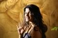 Actress Pooja Devariya Andhra Mess Movie Photos HD