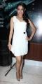 Actress Andrea Latest Pictures at Vishwaroop Mumbai Press Meet