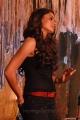 Tamil Actress Andrea Hot Photos in Virattu Tamil Movie