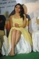 Andrea Jeremiah Hot Stills at Tadakha Movie Press Meet