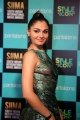 Actress Andrea Jeremiah Images @ SIIMA Awards 2019