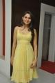 Telugu Actress Andrea Hot Photos in Short Frock