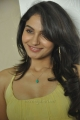 Actress Andrea Latest Hot Photos in Yellow Short Frock