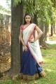 Actress Angana Rao Half Saree Stills