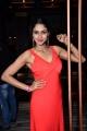 Actress Angana Rai Latest Hot Photos at Celebridge.in Launch