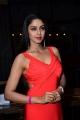 Telugu Actress Angana Roy Hot Photos