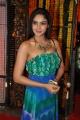 Actress Angana Rao Stills @ Srimanthudu Thanks Meet