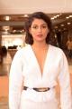 Actress Anisha Ambrose Stills @ Hi Life Luxury Exhibition
