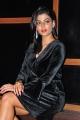 Actress Anisha Ambrose Pics @ Ee Nagaraniki Emaindi Movie Success Meet