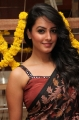 Actress Anita Hassanandani Hot New Pics