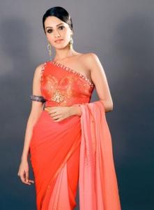 Telugu Actress Anita Hassanandani Photoshoot Stills