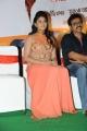 Actress Anjali Hot Images at Masala Platinum Disc Function