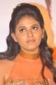 Telugu Actress Anjali Hot Images at Masala Platinum Function